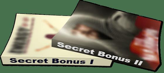 Two secret bonuses